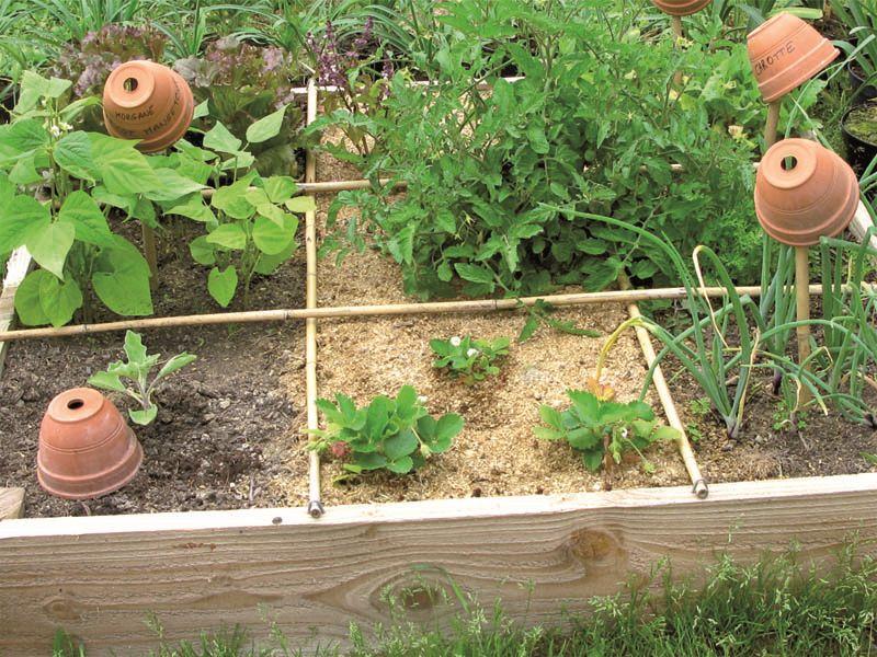 Comment Faire Une Jardiniere D Herbes Aromatiques Soignez Plus